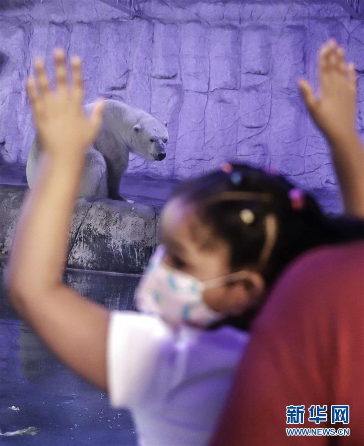 巴西圣保罗市水族馆近日重新开放